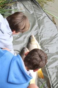 Une journée à la pêche avec PMC16